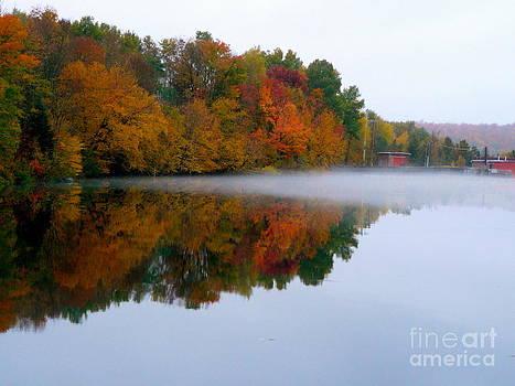 Autumn Reflections by Avis  Noelle