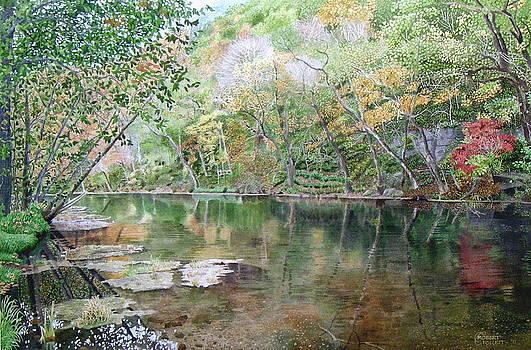 Autumn Reflections by C Robert Follett