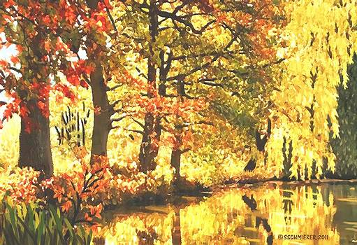 Autumn Reflections by SophiaArt Gallery
