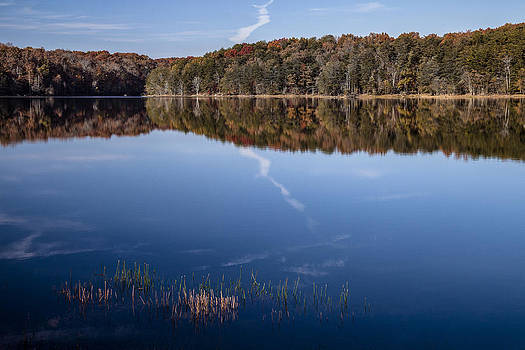 Autumn Reflections by Teresa Moore