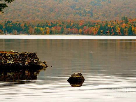 Autumn Ripples by Avis  Noelle