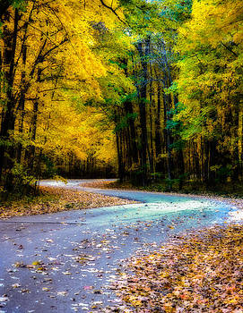 Autumn Road by Christopher L Nelson