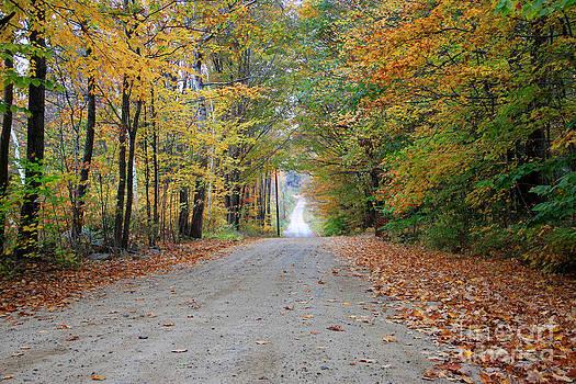 Michael Mooney - Autumn Roads