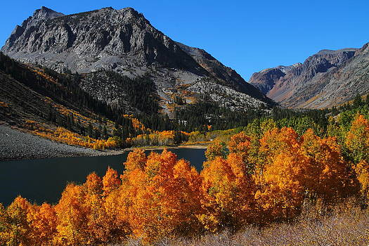 Autumn splendor at Lundy Lake in the Eastern Sierras by Jetson Nguyen