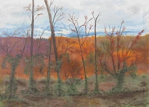 Autumn Splendor by Diane Pape