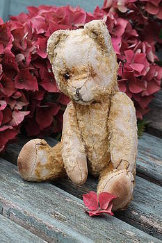 Autumn Teddy by Emma Manners