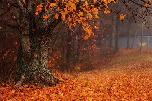 Autumn  by Teresa Moore