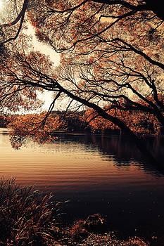 Jenny Rainbow - Autumn Time at the Lake