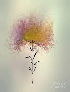 Autumn Tree by John Krakora