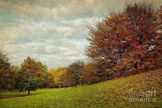 Angela Doelling AD DESIGN Photo and PhotoArt - Autumn V