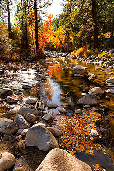Autumn West Walker River CA by Troy Montemayor
