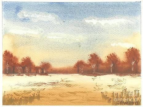 Autumn Woodlands by John Williams