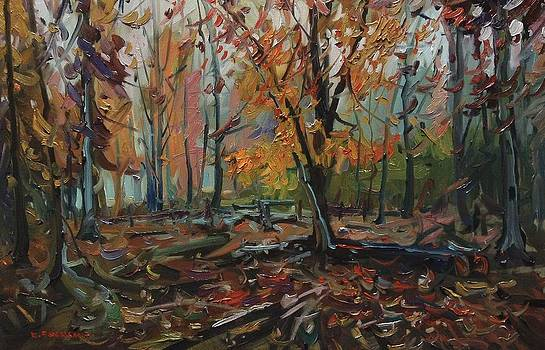 Autumn Woods by Kyle Buckland