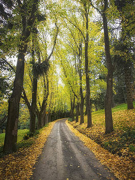 Autumns Day by Kim Andelkovic