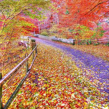 Autumns Way Rouge by John Kelly