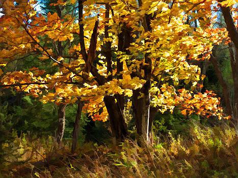 AutumnWind by James Bullard