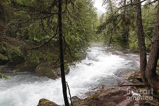 Jonathan Welch - Avalanche Creek