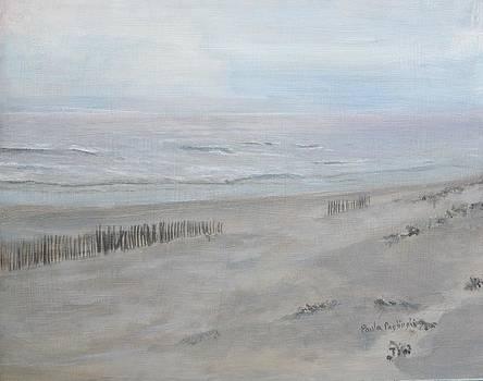 Avalon Mist by Paula Pagliughi