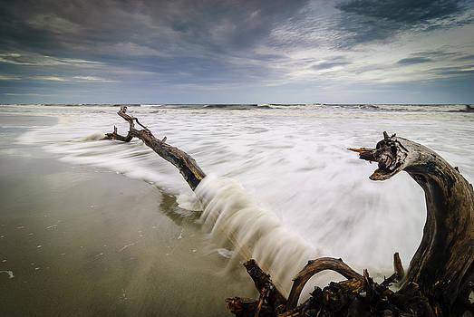 Awash by Steve DuPree