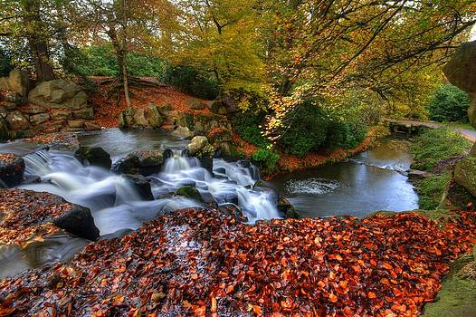 Awesome Autumn colours by David Valentyne