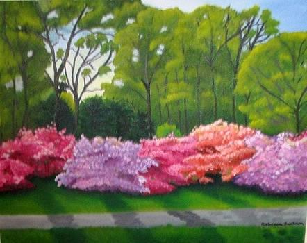 Azalea Garden by Rebecca Jackson