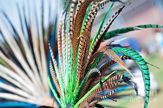 Aztecan Ceremony 1 by Gwyn Newcombe