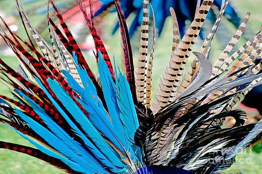 Gwyn Newcombe - Aztecan Ceremony 13