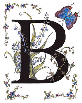 Stanza Widen - B for Bluebells and a Blue Hairstreak Butterfly