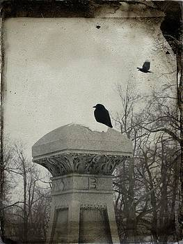 Gothicolors Donna Snyder - B Is For Blackbirds