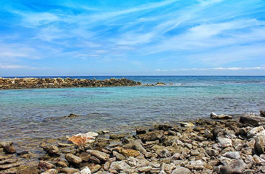 Carolyn Stagger Cokley - baby beach
