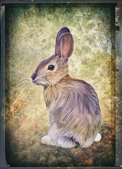 Angela A Stanton - Baby Bunny So Cute