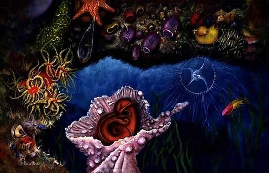 Baby Octopus  by Lynn Buettner