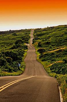 Back Road From Hana by DJ Florek