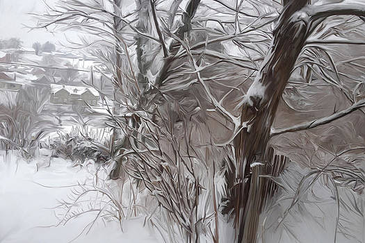 Backyard in Snow by Mary Vollero