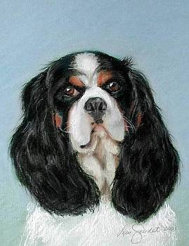 Bailey the Cavalier King Charles Spaniel by Lenore Gaudet