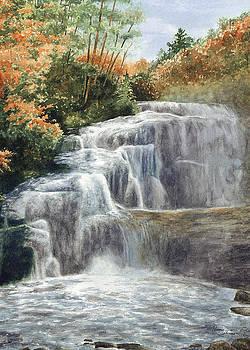 Bald Falls by Penny Johnson