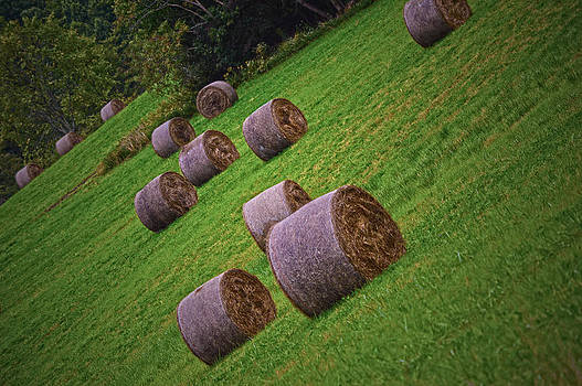 Bales and Bales of Hay by Jim Wilcox