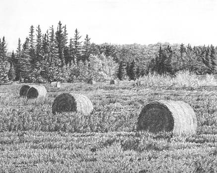 Bales on Field by Michelle Moroz-Chymy