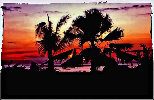 Steve Harrington - Bali Sunset polaroid transfer
