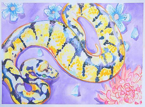 Ball Python by Jenn Cunningham