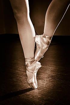 Ballet En Pointe by Elizabeth Wilson