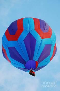 Joe Cashin - Ballooning