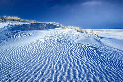 Baltrum - Frost on the dunes No 2 by Martin Liebermann