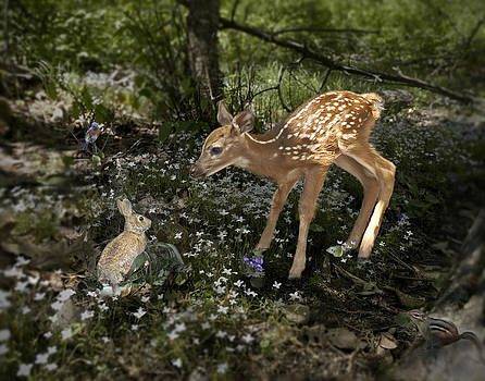 Bambi Revisited by Helen Ellis