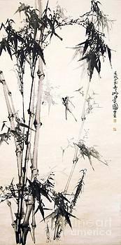 Roberto Prusso - Bamboo Grove