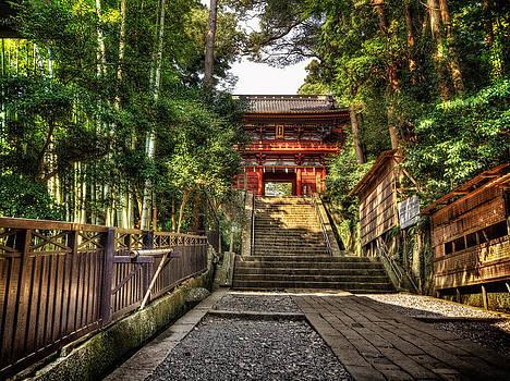 Bamboo temple by John Swartz