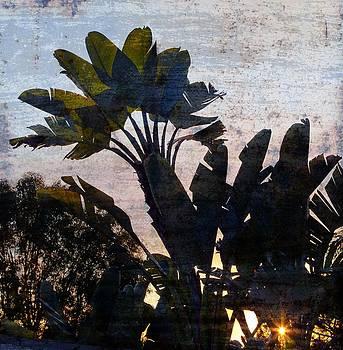 Gilbert Artiaga - Banana Palms