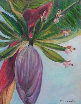 Banana by Patty Weeks