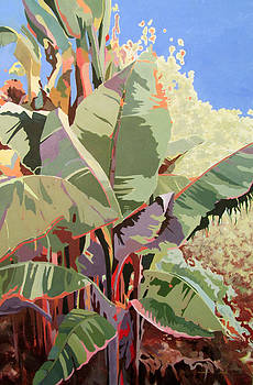 Banana Plant by Linda Bray