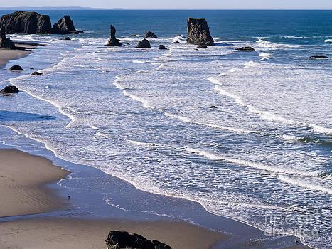 Bandon Beach  by Tracy Knauer